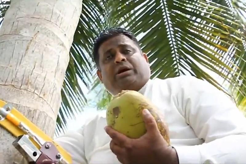 Ministro da una conferencia subido en una palmera y cortando cocos (+video). Noticias en tiempo real