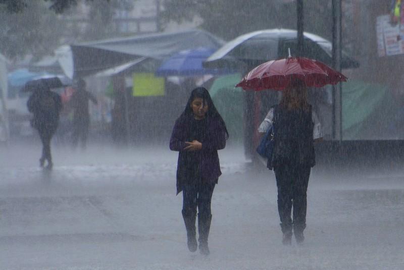 Se forma tormenta tropical Beta; prevén intensas lluvias en varios estados. Noticias en tiempo real