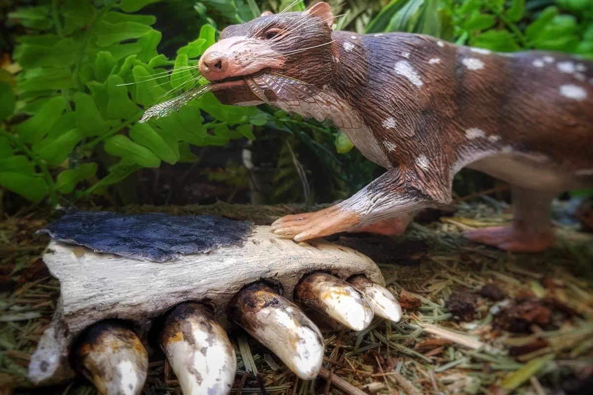 Descubren restos de un nuevo mamífero en la Patagonia chilena
